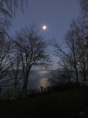 Månen lyser över Hjälmaren. En vacker och stilla kväll. Fotade gjorde Ewa Ragnarsson Holmgren.