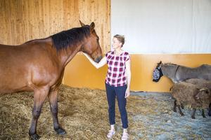Anne-Christine med gårdens senaste tillskott, den ståtliga travhästen Prinsen, som nu gått i pension och ska få lugna dagar i Lingbo.