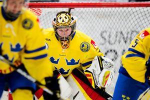 Sara Grahn, Brynäsmålvakten, laddar för sin tredje OS-turnering. Bild: Nils Jakobsson/Bildbyrån.