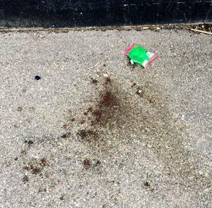 Blodet på marken kommer från läkaren, konstaterar NFC, Nationellt forensiskt centrum i Linköping. Foto: Polisen