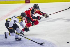 Hur bra blir en fräsch Jesper Boqvist den här säsongen? Det är en av frågorna som vår hockeyredaktör Daniel Sandström ställer sig inför säsongen.Foto: Robert Nyholm/TT