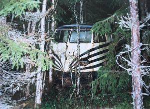 Två brödbussar placerades uppe på Skålberget i slutet på 60-talet till nytta för skogsröjarna. Där blev de så småningom ett med skogen innan de efter 40 år fraktades ner till Ingels. Bild: Ingemar Hammare.