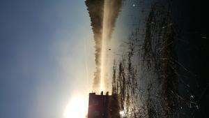 Bilden är tagen i Hysingsvik. När solen väcker naturen till en ny dag är så fantastiskt vackert.  Foto: Karin Nord Dahl.
