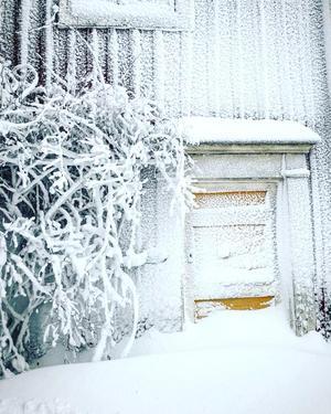 Kalvhaga, Näsviken. Foto: Kristin Nirsgård Nylander