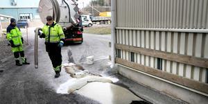 Oljan läckte ut under ett par dagar innan den trasiga slangen upptäcktes. Då hade sex kubikmeter olja (sex tusen liter) runnit ut. Foto: Magnus Grimstedt