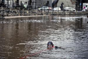 En av de dykare som sökte av botten på Svartån i Västerås under torsdagen. Vattentemperaturen var två grader.