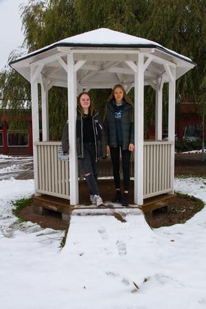 De här två tjejerna och Ebba Mattsson har byggt lusthuset under 2018.
