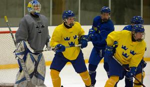 Alexander Holtz, född 2002, är en av Sveriges största talanger och en nyckelspelare i U18-landslaget trots att han är ett år yngre än de flesta.