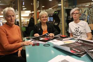 Bland andra Anita Andersson, Monica Green och Josefin Ohlsson arrangerar HeForShe Arts Week som inleds på lördag.