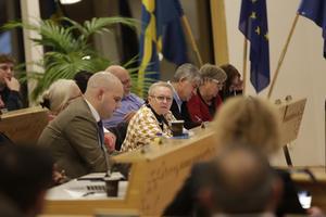 """""""Vi kommer aldrig nå framgång om vi inte släpper in fler aktörer"""" sa Anne-Marie Larsson (M) när kommunfullmäktige diskuterade äldreomsorgens underskott."""