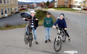 Viking Öhlén, Emil Lybrand och Levi Molin är tre av drivkrafterna i det ungdomsprojekt som förhoppningsvis ska mynna ut i en ny cykelpark i Fränsta våren 2020.