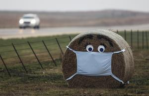 På med munskyddet. Foto: Travis Heying/AP Photo