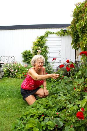 Birgitta Svärd älskar trädgårdsarbete.