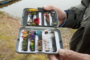 Jan Enesveds flugaskar bjuder på några riktiga karameller. Längst nere till vänster ser vi ett gäng nymfer.