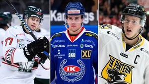 Tingsryd, Oskarshamn och Pantern ställer sig bakom upproret i hockeyallsvenskan. Bild: Bildbyrån.