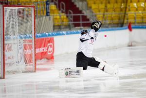 Blir Anders Svensson eller Patrik Hedberg etta i VM? Det är upp till målvakterna själva, enligt