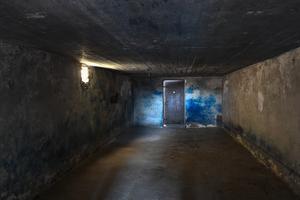 En av gaskamrarna i det nazistiska förintelselägret Majdanek. Foto: Jonas Ekströmer /TT
