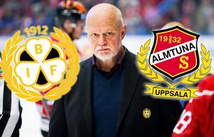 Roger Melin kommer hjälpa Almtuna under resten av säsongen. Foto: Johan Bernström, Bildbyrån.