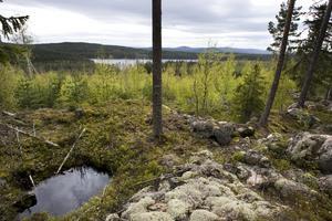 Uppe på Gruvberget finns spår av tisigare försök att bryta malm. I bakgrunden syns Långmyrsjön.