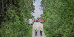 Allmänheten har inte glömt sommarens anlagda skogsbränder. Foto: Niklas Hagman