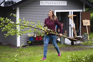 Anna Thors höll i trådarna när Klingstagården iordningställdes för midsommarfirande.