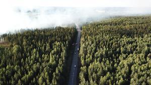 Röken från skogsbranden utanför Jularbo i Avesta kommun påverkar trafiken på riksväg 68. Trafikverket uppmanar trafikanter att om möjligt välja en annan väg förbi platsen.Foto: Stefan Johansson