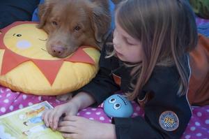 Hunden Alwin lyssnar när Hanna Hemå läser boken