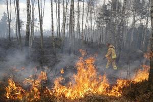 SMHI har gått ut med en varning för gräsbränder i Dalarna, förutom dalafjällen. Under tisdagseftermiddagen är risken för gräsbränder stor i länet, enligt SMHI.