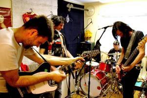 Punkfest. Magic Mushrooms är ett av banden som spelar under lördagens punkfest på Spegeln. Erik Süss träffade bandet inför spelningen.