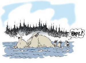 """Det är inte ovanligt att få se en björn komma simmandes över ett vattendrag när de har vaknat ur vintervilan. Björnar är väldigt bra simmare. """"De kan simma över Ströms Vattudal i princip för nöjes skull"""", säger Lars Svanberg."""