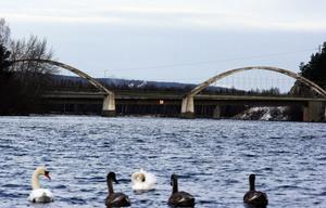 Den välkända siluetten över Ljungan kanske snart försvinner. Harabergsbron är i dåligt skick och måste antingen byggas om eller rivas.