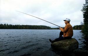 Har du försökt fiska abborre med barnen eller barnbarnen utan att få den förr mest vanliga fiskarten när man metade med mask ifrån en brygga, utan att få någon, frågar åtta företrädare för Landsbygdspartiet oberoende.