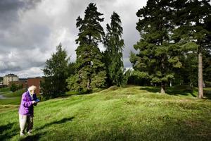 Vilka begravdes här? Lennart Bäck berättade om forskarnas funderingar kring gravfältet Enbuskabacken.
