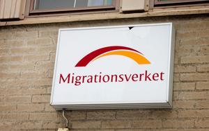 Fackförbundet ST:s representanter tycker att det saknas långsiktighet och ett helhetstänk inom Migrationsverket.