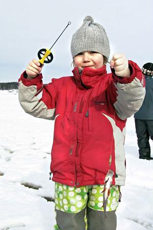 6-åriga Astrid Johansson strålar, när hon får upp abborre nummer två som är större än den första.