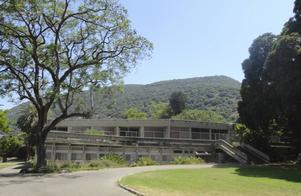 Matsalen på kibbutzen Yagur intill Karmelberget. Kibbutzen är en Israels största.   Mose Apelblat/TT