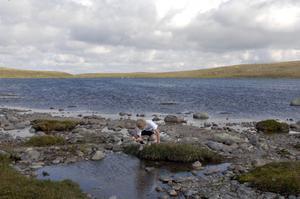 Svantesontjärnen bjuder kristallklart vatten och i sjön har det funnits rester av den skog som en gång täckte fjället.