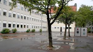 Antalet kvadratmeter skolyta per elever är högre i Avesta än i andra kommuner.  Det gör att kostnaden per elev också blir hög.