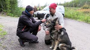 Reportern Mats Olsson intervjuar Tures husse Niklas Hådén. Jakthunden klarade sig utan större skador efter grävlingsattacken.