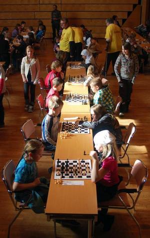 83 elever från fem klasser inom årskurs fyra från Backe, Frostviken, Hammerdal och Strömsund träffades och gjorde upp om vilka som åker till länsfinalen i Östersund i slutet av april. Foto: Catarina Montell