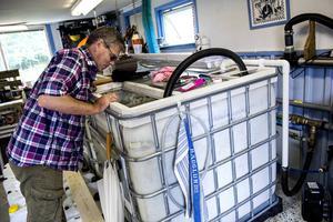 Under vintern bor fiskarna i Görans garage. Tanken rymmer 3000 liter vatten och är kopplad till filteranläggningen.