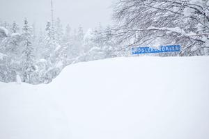Så här såg det ut i Höglekardalen en vinterdag 2010. Blir det lika i år igen?