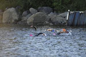 Sporten swimrun ökar i Sverige.