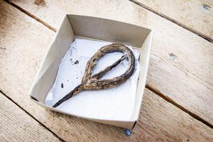 Det här är ännu ett okänt föremål. Arkeologen Bosse Ulfhielm berättar att det har hittats vid en boplats men att de inte vet vad det är för något.