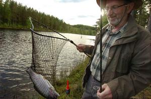 Fina fisken! Lennart Wiström tog upp fyra på ett litet kick. Det blev fler.
