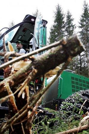 Maskinringen vill nu få samma positiva tillväxt i Ångermanland som man haft i Medelpad. På tio år har omsättningen 100-faldigats. Det kan handla om allt från röjning till gräsklippning.