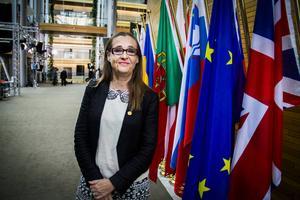 Bodil Valeros (MP) hoppas att hennes initiativ ska göra att EU-kommissionen engagerar sig för att Fikru Marus ska få en korrekt rättslig behandling i Etiopien.