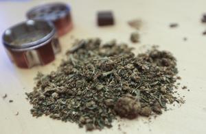 Torkad cannabis mals i speciella kvarnar som kallas