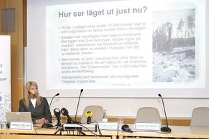 Annika Viklund, vd för Vattenfall eldistribution, förklarar läget vid presskonferensen i Norrtäljes kommunhus.