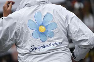 Skribenten berättar om bakgrunden till sitt engagemang i SD. Foto: Johan Nilsson/TT